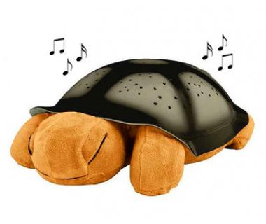 Магическа пееща и светеща костенурка